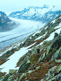 Great Aletsch Glacier (Bettmerhorn, Switzerland) Royalty Free Stock Images