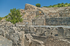 Great amphitheater with stone fragments and trees Stock Images