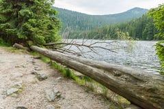 Great Arber Lake, Bavaria - Germany.  Stock Photo