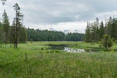 Great Arber Lake, Bavaria - Germany.  Stock Photos