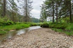 Great Arber Lake, Bavaria - Germany.  Stock Image