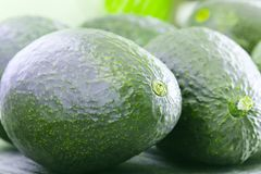 Great avocado picture in macro close up view. Ripe avocado on green background with shallow depth of field. Healthy food concept of organic, ripe and juicy stock images