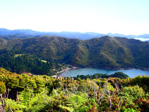 Great Barrier Island, New Zealand. Looking down into Orama's Bay, Great Barrier Island, New Zealand Stock Photography