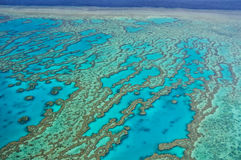 Great Barrier Reef - Aerial View Stock Photography