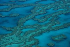 Great Barrier Reef, Australia Royalty Free Stock Photography