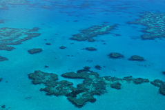 Great Barrier Reef - Australia Stock Image