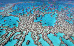 Great Barrier Reef colours. Aerial view of the magnificent Great Barrier Reef with its crystal clear waters and tropical islands. A romantic world heritage site stock photography