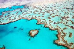 Great Barrier Reef. Heart Reef in the Whitsundays Australia Stock Image