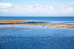 Great Barrier Reef At Low Tide Royalty Free Stock Photography