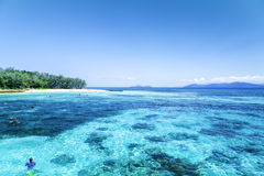 The Great Barrier Reef in Queensland State, Australia Stock Images