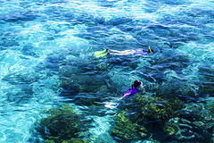 The Great Barrier Reef in Queensland State, Australia Stock Photo
