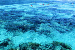 The Great Barrier Reef in Queensland State, Australia Royalty Free Stock Photo