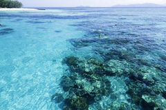 The Great Barrier Reef in Queensland State, Australia.  royalty free stock photo