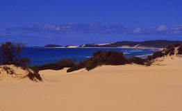 Australia: Sanddunes at the coast of Fraser Island. Great Barrier Reef: Sanddunes and beaches at the coast of Fraser Island, Queensland Stock Photos