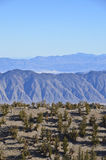 Great Basin Stock Images