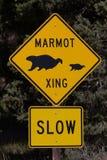 Great Basin National Park Stock Photo