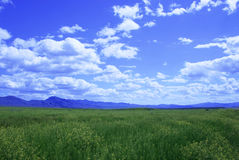 Great Basin Pastoral Stock Photo