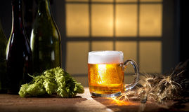 Great beer and hops super still life Royalty Free Stock Image