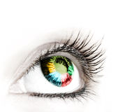 Great big eye. Royalty Free Stock Images