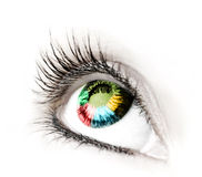 Great big eye. Royalty Free Stock Photography
