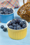 Great bilberry. Great fresh bilberry in color bowls Royalty Free Stock Image
