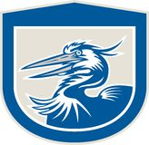Great Blue Heron Head Shield Retro Stock Image