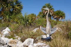 Great Blue Heron on Rocks Stock Photo