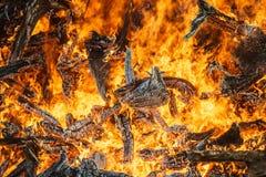 Great bonfire closeup, orange fire flames Stock Photos