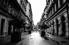 A great boulevard in romania Royalty Free Stock Photo