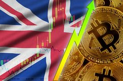 Great britain flag and cryptocurrency growing trend with many golden bitcoins royalty free stock photo