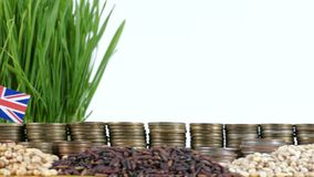 Great Britain flag waving with stack of money coins and piles of wheat. And rice seeds stock footage