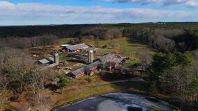 Great Brook Farm State Park aerial view, Massachusetts, USA