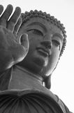 The great Buddha Royalty Free Stock Photos