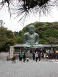 The Great Buddha Stock Photos