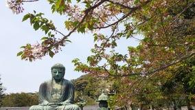 Great Buddha Daibutsu in Kōtoku-in,  Kamakura, Japan royalty free stock photo
