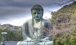 Great Buddha Stock Images