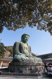 Great Buddha Japan Royalty Free Stock Photo