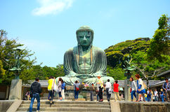 The Great Buddha, Kamakura, Japan Royalty Free Stock Photo