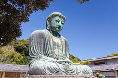 Great Buddha - Kamakura, Japan Royalty Free Stock Images