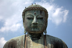 Great Buddha, Kamakura, Japan Royalty Free Stock Images