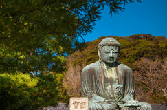 The Great Buddha - Kamakura, Japan Stock Photos