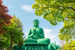 The great Buddha of Nagoya with tranquil place in forest. Stock Photo