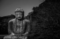 Great Buddha statue in Kamakura Stock Images