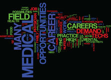 Great Careers In The Medical Field Text Background Word Cloud Concept Royalty Free Stock Images