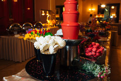 Great catering. Fashionable catering in beautiful interiors Stock Image