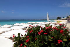 Great Cayman Marriott Beach Resort. The Beach House Experience Grand Cayman Marriott Beach Resort on Seven Mile Beach Georgetown, CI Royalty Free Stock Photos