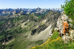 Great clear view from high mountain to many other peaks. Great clear view from high mountain over other peaks. Some orange lichen und yellow flowers in the Royalty Free Stock Photo