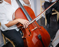 Great closeup  view of a person sitting and practicing on cello musical old vintage instrument Royalty Free Stock Images