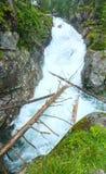 Great Cold Valley summer view (High Tatras, Slovakia). Royalty Free Stock Photos