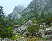 Great Cold Valley summer view (High Tatras, Slovakia). Stock Images
